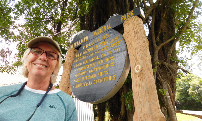 http://theworklady.com/wp-content/uploads/2016/12/Jan-McInnis-makes-it-to-Kilimanjaro.png