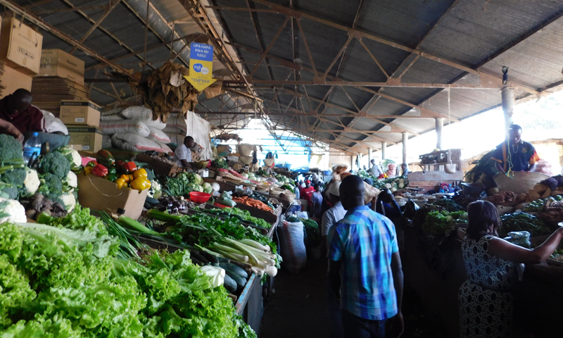 http://theworklady.com/wp-content/uploads/2016/12/grocery-shopping-in-Arusha.png